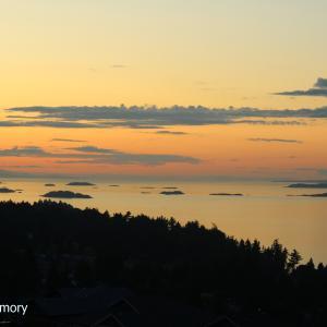 本日は住宅街の高台から見る夕焼け