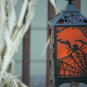 Halloween and spiderwebs:  ハロウィーンと蜘蛛の巣