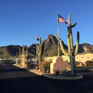 アリゾナ州、トゥーソン近郊のRVパーク。あら、シニア?