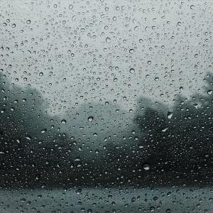 オレゴンはひたすら雨。憂鬱になった時の解決法