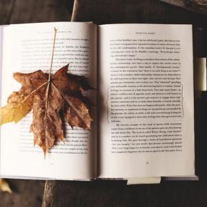 [一緒に洋書5] 英語で本を1冊読んでみよう。徹底解説付き。