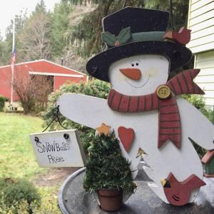 [潜入レポート] 圧倒!クリスマスの飾り付け Extreme!