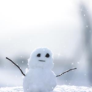 入試面接当日は雪☃︎