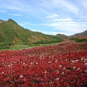 大雪山の紅葉と初冠雪