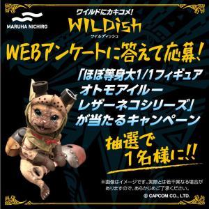 【狩飯】『WILDish』×『アイスボーン』コラボパッケージ発売記念キャンペーン決定!