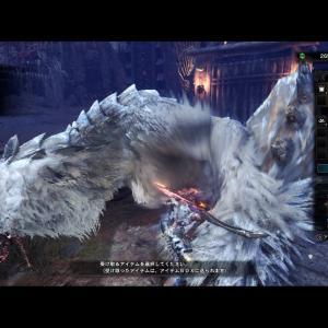 【闘技場】老子の高踏をプレイした感想【氷人佩くベリオロス】
