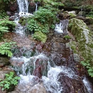 瓜割の滝『若狭』