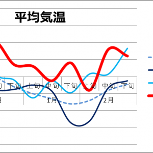 2020 Season (11) 山中の冬の気候記録