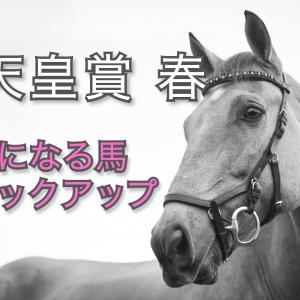 【天皇賞・春】気になる馬ピックアップ!【穴馬】