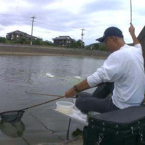 9月17日 竹馬川でヘラブナ釣り