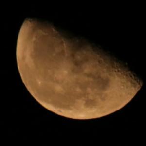 獅子座下弦の月~幸せの予感