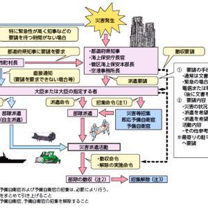 自衛隊「水持ってきたよ!」神奈川「余計なことすんな」自衛隊「え?」神奈川「地べたに捨てて帰れ」
