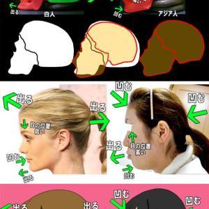 外人さん「日本の漫画では鼻が描かれていないことが多い。低い鼻がコンプレックスなのか?」