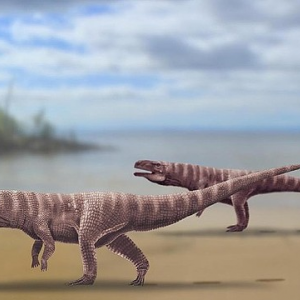 【画像】2億5000年前のワニ、発見されるwwwwwwwwwwwwwww
