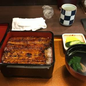 【謎】鰻が高すぎる理由、そしてそれを有難がって食べる日本人