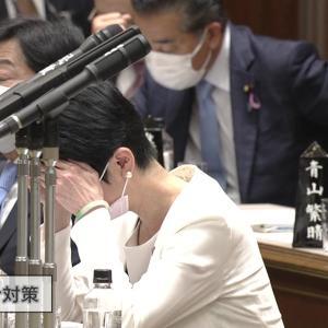 【悲報】蓮舫さん勘違いで発狂し国会を5時間止める