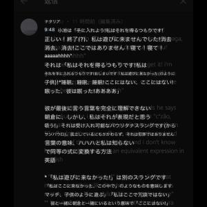【悲報】朝倉未来さん絞め落とされる前にひどい暴言を吐かれていた