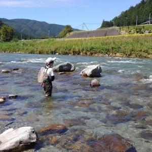 9月8日、娘と馬瀬川上流!