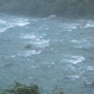 7月26日、降雨で鮎を諦め魚種変更