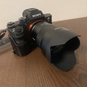 小金のSonnar T* FE 55mm F1.8 ZA  実写レビュー