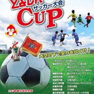 第12回 とよしんCUPサッカー大会【組合せ】