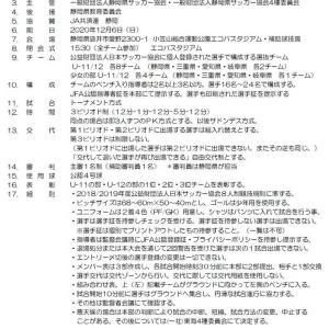 2020年度 第17回 東海ユースU-11,U-12選抜サッカー東海大会【日程・要項】