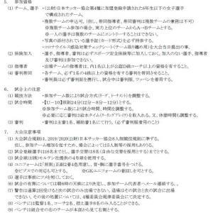 AIFA2020 第29回 愛知県少女サッカー大会 U-10【要項・出場チーム】