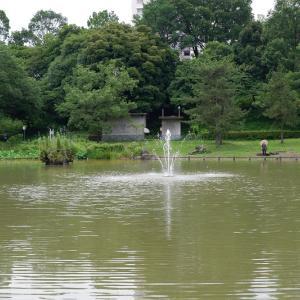 大きな池とジョギングコースがある豊ヶ丘南公園