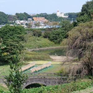 ウォーキングコース 里山の風景とダイヤモンド富士が楽しめる栃谷戸公園