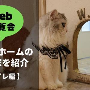【Web内覧会】トイレ*収納