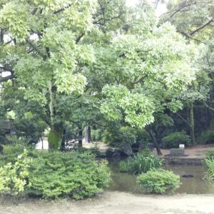 梅小路公園を散策