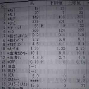 2021年1月14日 血液検査結果