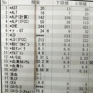 2021年07月29日 血液検査結果