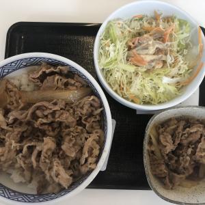 牛丼は吉野家派です。ニカタツさんの食べ方はできませんが。