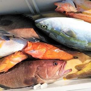 飲食店が釣った魚の持ち込みを断る理由
