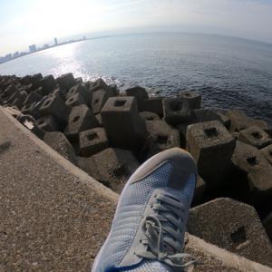 濡れたテトラで滑らない靴発見!湾奥青物フィーバーのマストアイテム!