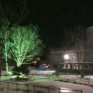 ライトアップされた雪の公園は幻想的 根室市 北海道