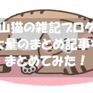 山猫の雑記ブログ。ブログ内記事のまとめ記事を目次のようにまとめた記事!