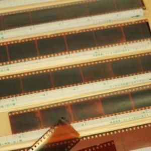 思い出の詰まった「古いネガフィルム」朽ちる前に「デジタル化」しよう!~フィルムスキャナーをご紹介~