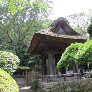 鎌倉を歩く・・・小町通り「ドルチェ ファール ニエンテ」の鎌倉野菜のランチプレートと、報国寺(竹の庭)の散策