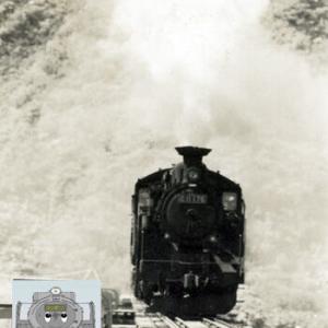 日高本線のC11