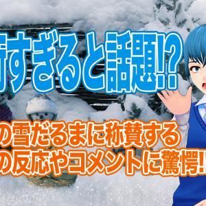 海外の反応で日本の雪だるまが芸術すぎて異次元だと絶賛