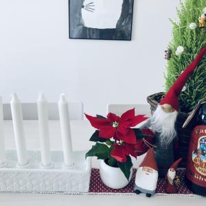 【クリスマスインテリア】1st アドベント☆