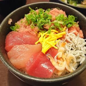 【食べ物メモ】静岡県焼津市 のっけ家