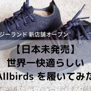 Allbirds(オールバーズ)日本未発売 世界一快適なスニーカーをニュージーランドで購入