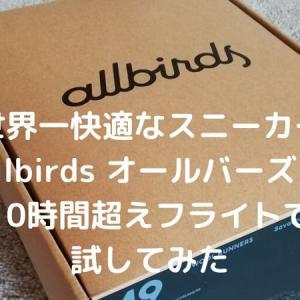 Allbirds(オールバーズ)10時間超えフライトでレビュー