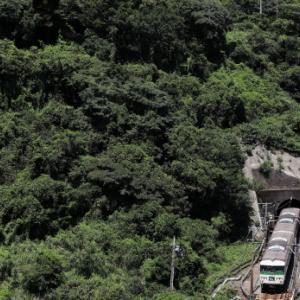 深緑のトンネル-1