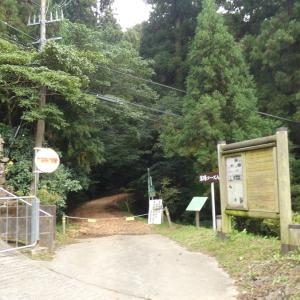 若杉山の落葉コースで『森林散策&塩むすびランチ&絶景』を楽しんできました♬