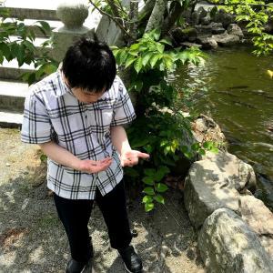 宗像大社で鯉のエサやりをしようとするが、池の水が!