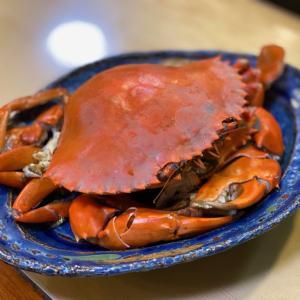 浜寿司|舘山寺にあるお寿司屋さんで幻のどうまん蟹、握り寿し、うな丼も!